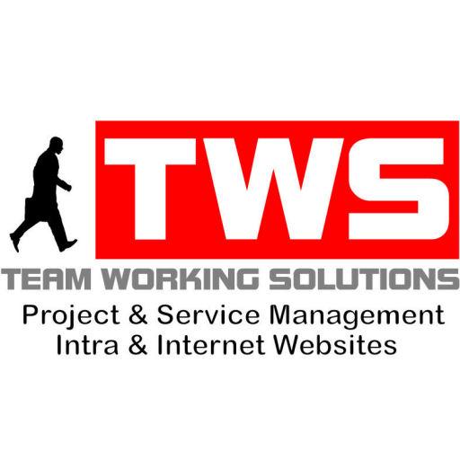TeamWorkingSolutions logo